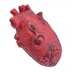 Imitation Human Heart Halloween Horror Prop