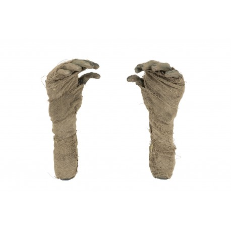 Mummy Hand Halloween Ground Breaker