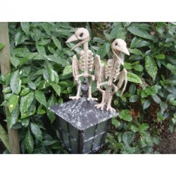 Pair Of Skeleton Bird's Halloween Decoration