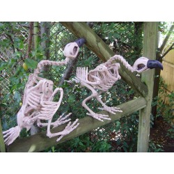 Pair Of Skeleton Vultures Halloween Decorations