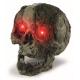 Putrid Light Up Skull