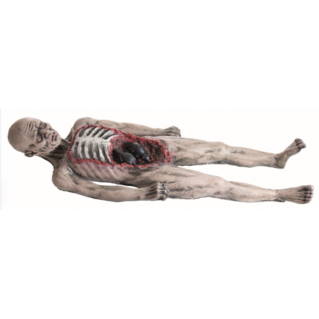 Corpse With Rats Halloween Prop