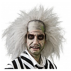 Beetlejuice Wig Halloween Fancy Dress