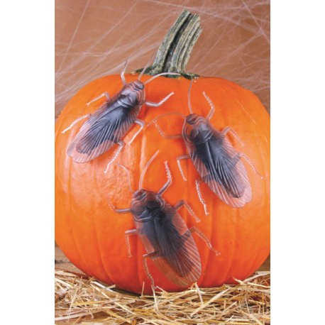 Pack Of 3 Roaches