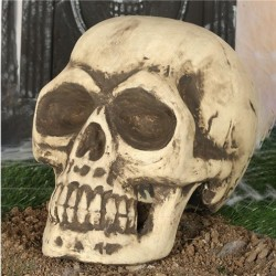 Foam Halloween Skull Decoration