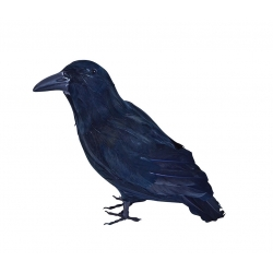 Feather Raven Halloween Decoration