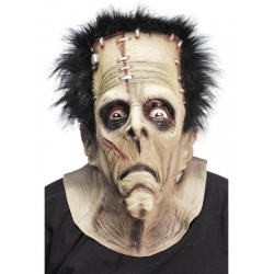 Perfectly Frank Halloween Monster Mask